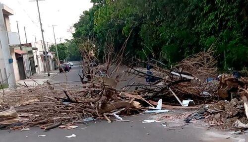 Moradores no Santa Angelina fecham rua com galhos de árvores