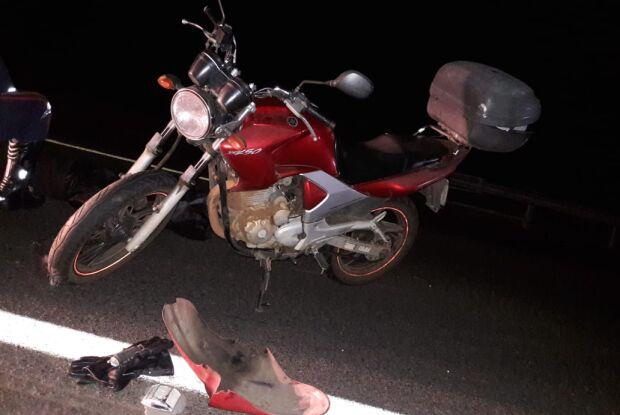 Casal em moto atropela capivara na rodovia e mulher morre
