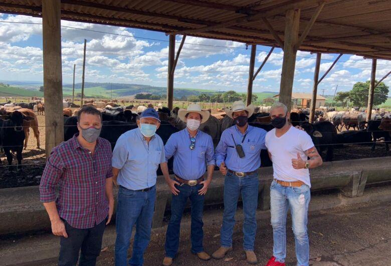 São Carlos vai exportar 5 mil cabeças de gado para Arábia Saudita