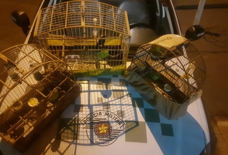 Polícia Ambiental faz apreensão de aves em Ibaté