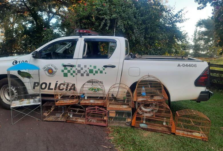 Polícia Ambiental apreende aves que estavam em cativeiro