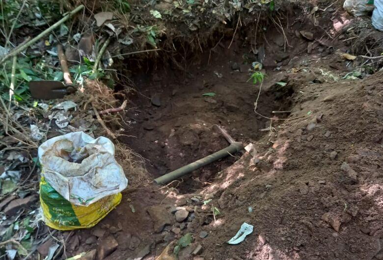 Corte de vegetação nativa rende multa a três homens