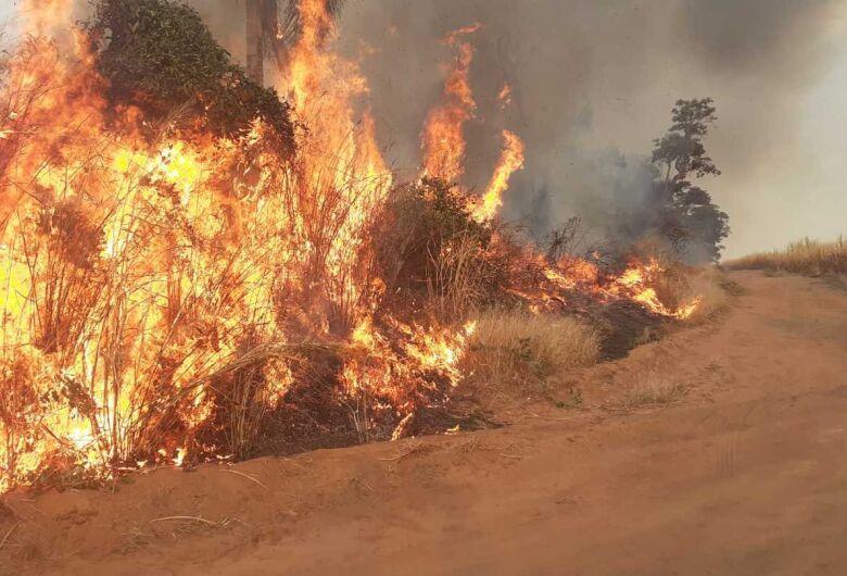Corpo de bombeiros atende várias ocorrências de queimadas em São Carlos