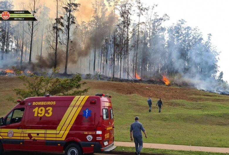 Queda de aeronave em Piracicaba deixa sete mortos
