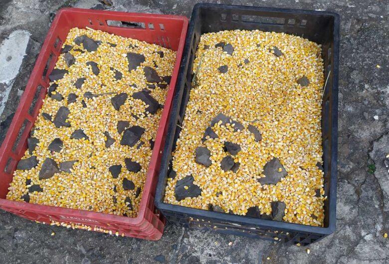 Suspeito é detido após furtar caixas de milho