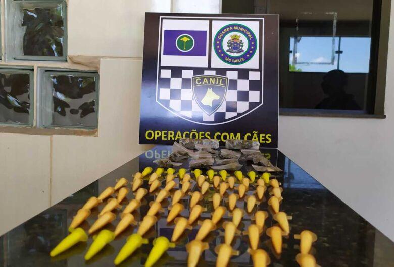 Com ajuda da cachorra Naja, GM localiza drogas em mata no São Carlos 5