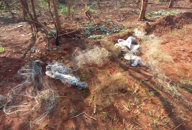 Trio é flagrado praticando pesca ilegal na Usina Tamoio