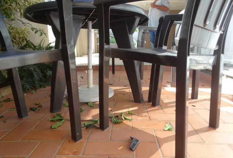 Família revela madrugada de pânico: os atos violentos durante tentativa de roubo
