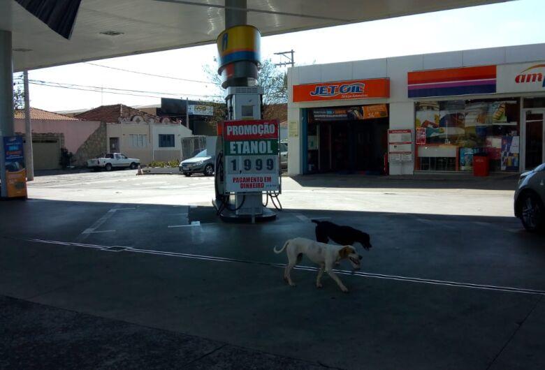Na região, combustíveis tem redução acentuada; em São Carlos a baixa foi mínima