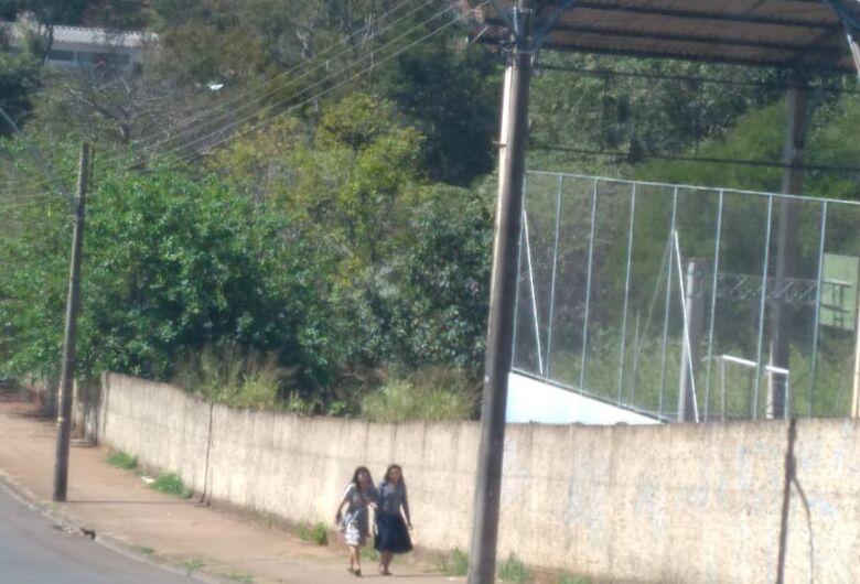 Escola João Jorge Marmorato vira uma floresta