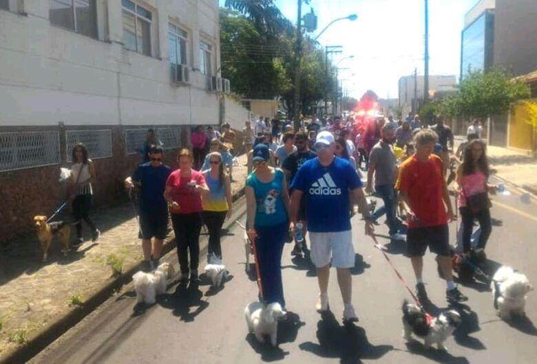 Cãominhada na Vila Nery arrecada 400 quilos de ração para cães