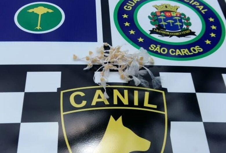 GM apreende adolescente com drogas no Romeu Santini