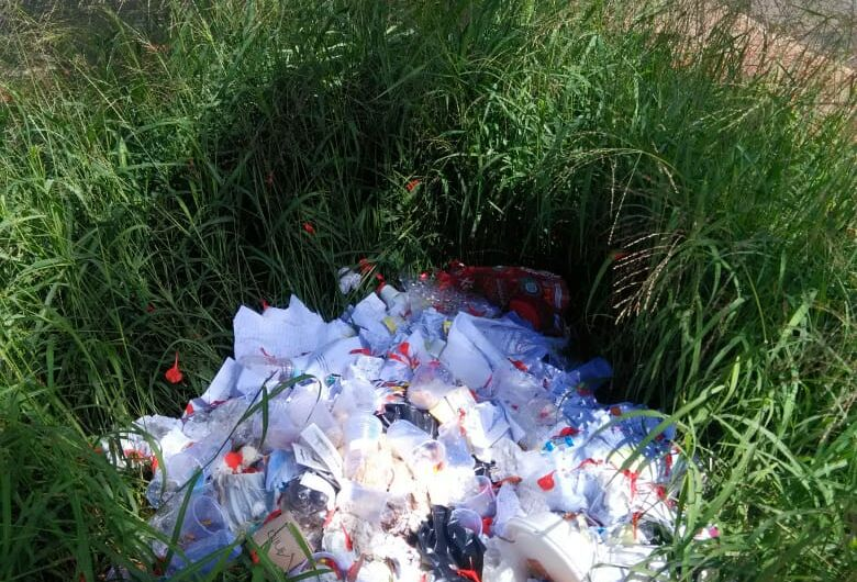 Mato e lixo tomam conta da Rua Larga