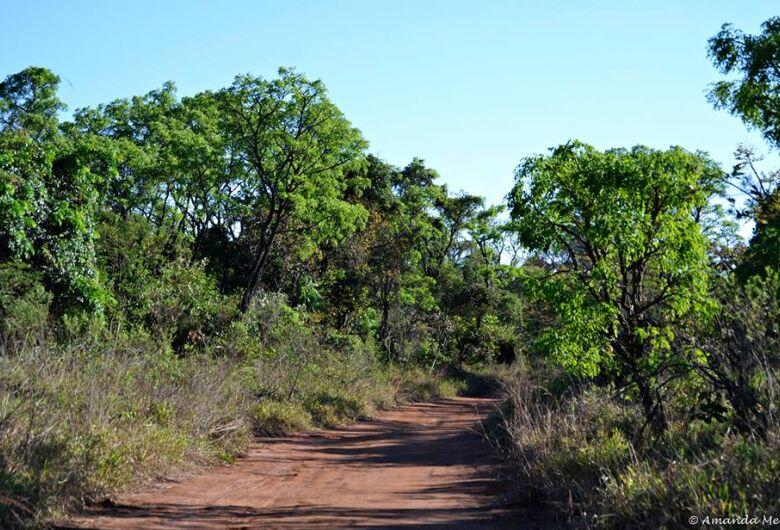 UFSCar promove reunião aberta que discute Protocolo do Cerrado