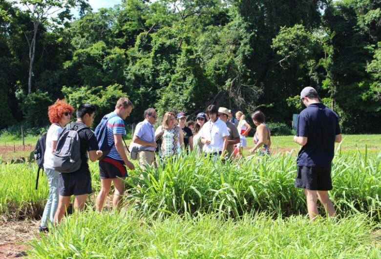 Pesquisadores da Nova Zelândia conhecem sistemas de produção sustentáveis na Embrapa São Carlos