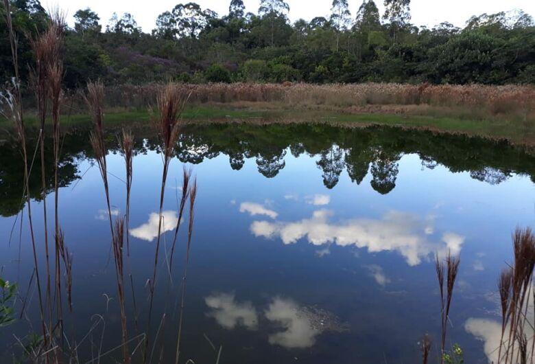Visita monitorada ao Cerrado celebra Dia Mundial do Planeta Terra