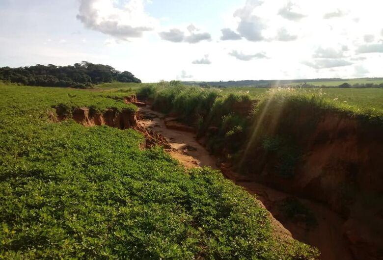 Roselei denuncia devastação ambiental no Arcoville