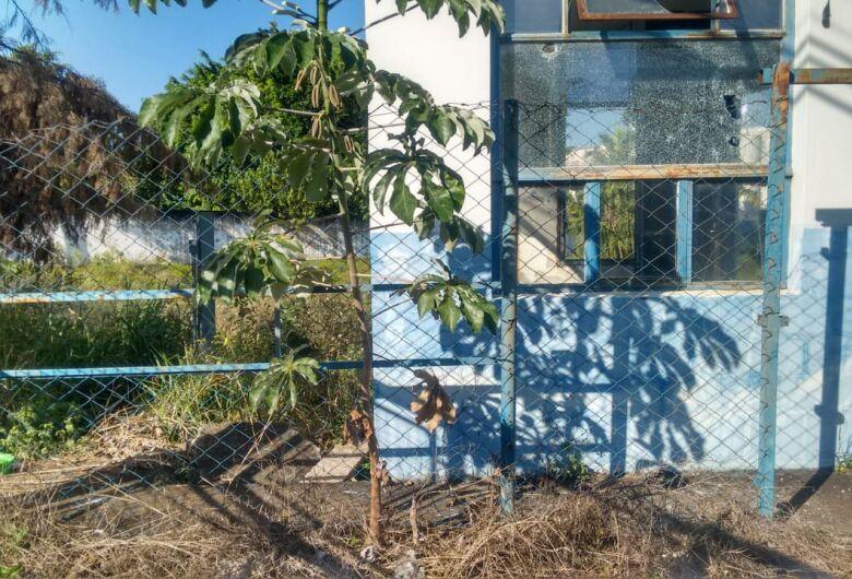 Bebê de um ano contrai dengue; família reside ao lado de prédio abandonado