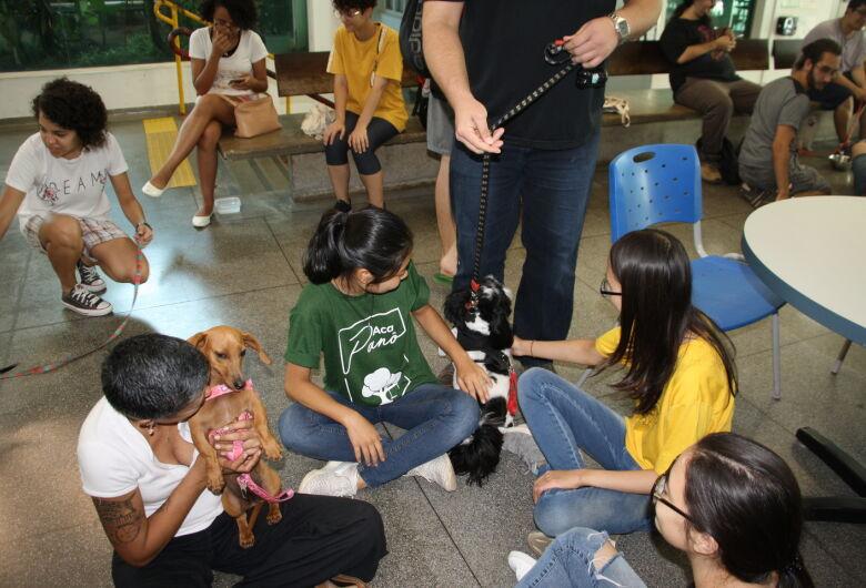 """Depois do sucesso da primeira edição: vem aí o """"IFSCão – 2º Dog Therapy"""" em São Carlos"""