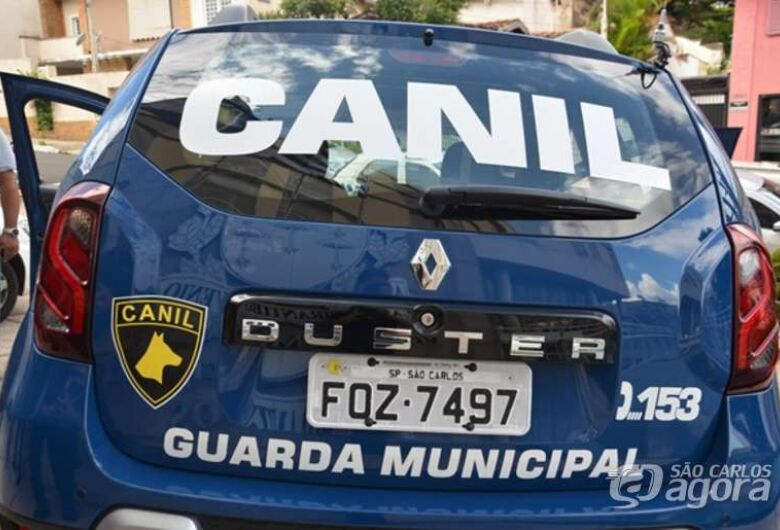 Guarda encontra mochila recheada de cocaína no Jacobucci