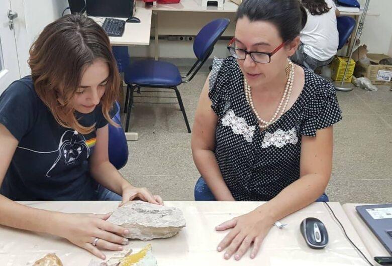 Professora da UFSCar investiga como argilas preservam organismos fósseis