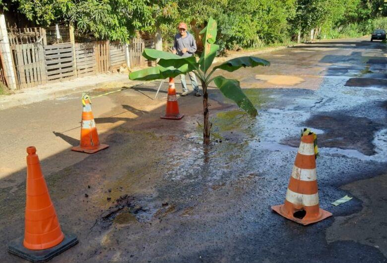 Moradores plantam bananeira próximo a vazamento de água