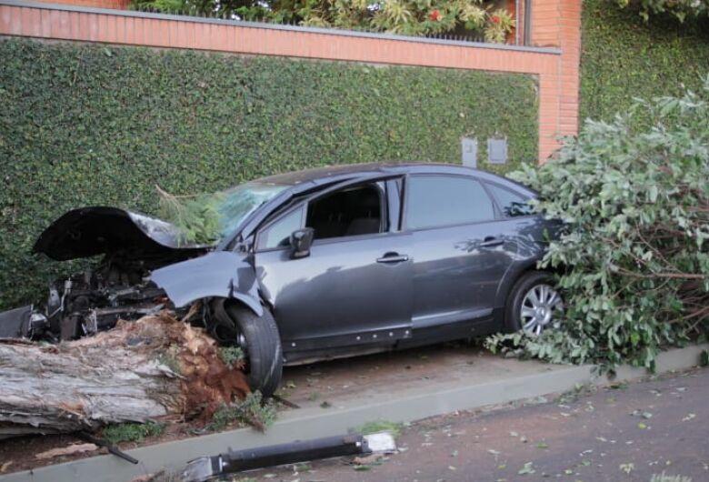 Carro bate violentamente em duas árvores e motorista foge do local