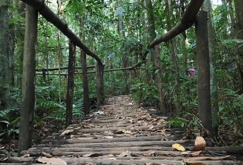 UFSCar promove visita monitorada ao Cerrado no dia 27 de julho