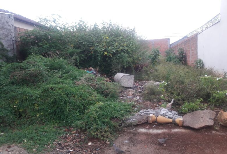 Terreno abandonado serve de depósito de lixo no Botafogo