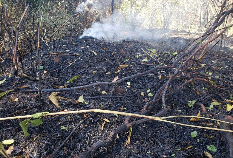 Oferenda pode ter causado incêndio em reserva florestal do Santa Felícia