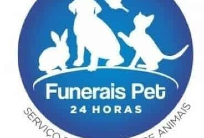 Homenagem a cachorrinha Filo