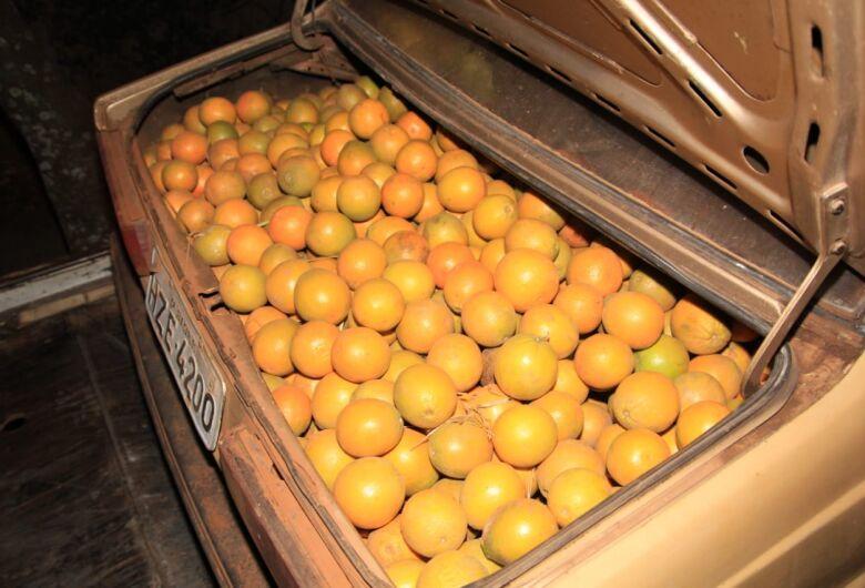 Dupla é detida com laranjas de origem duvidosa em Ribeirão Bonito