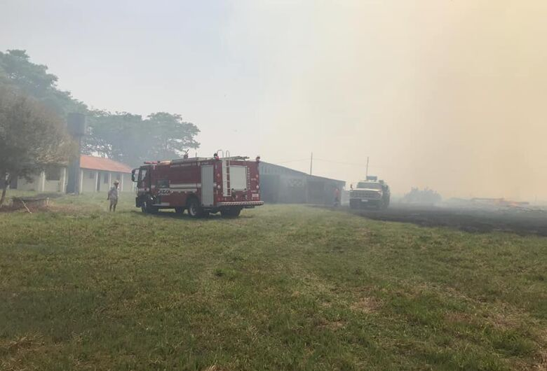 Fumaça de incêndio em mata invade a estrada do Broa e leva perigo aos motoristas