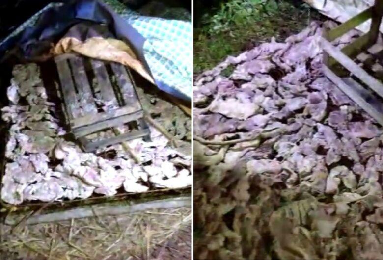 Homem é detido ao reaproveitar carne podre e vendê-la a comerciantes na região