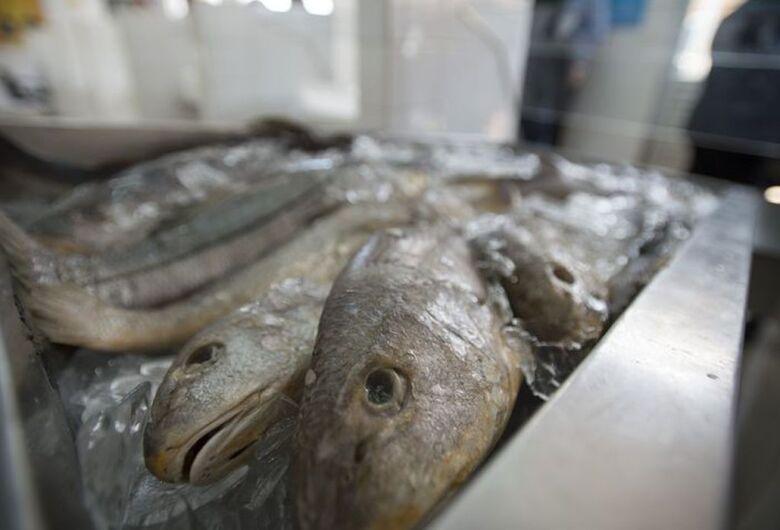 Preço do peixe para Semana Santa deve variar entre 0,5% e 2,5%