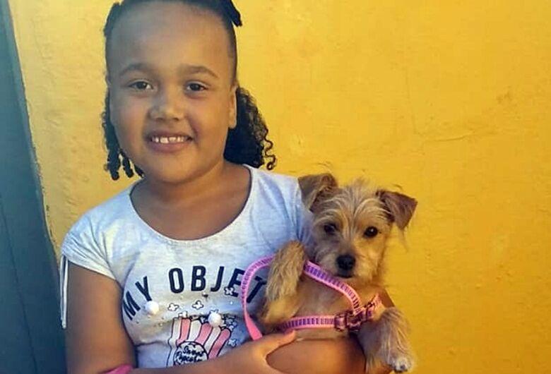 """16 animais são adotados """"sábado de visitação"""" no Canil e Gatil municipal"""