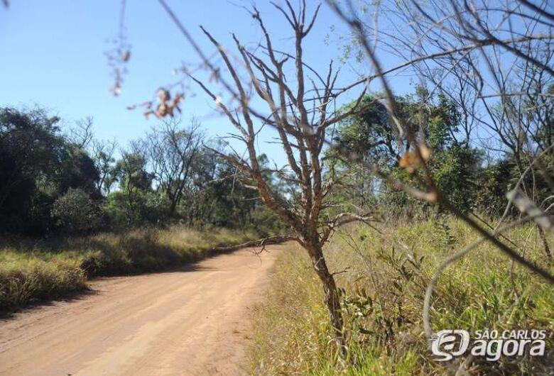 UFSCar suspende atividades de visita ao Cerrado