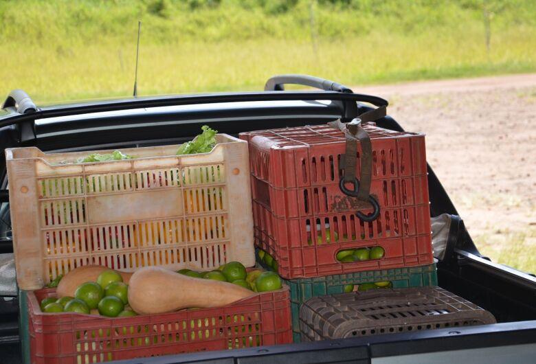 Agricultura distribui frutas cítricas para unidades de saúde