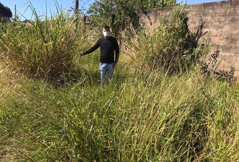 Vereador Rodson pede limpeza e corte de mato urgente em ruas do Jardim Novo Horizonte