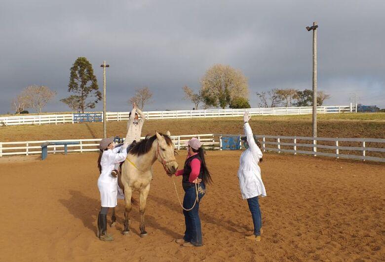 Aprovada concessão de área para atividades de Equoterapia em São Carlos