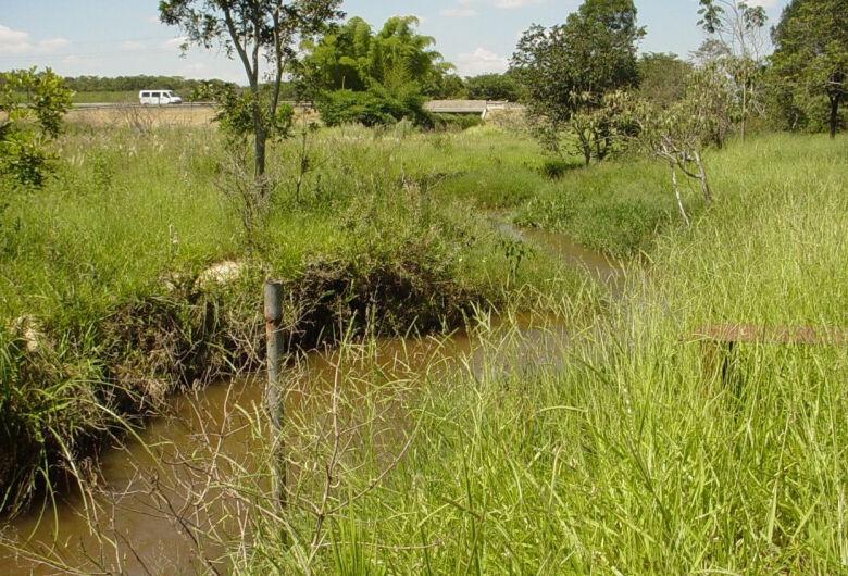 Pesquisa em São Carlos aponta caminhos para preservar Ribeirão do Feijão