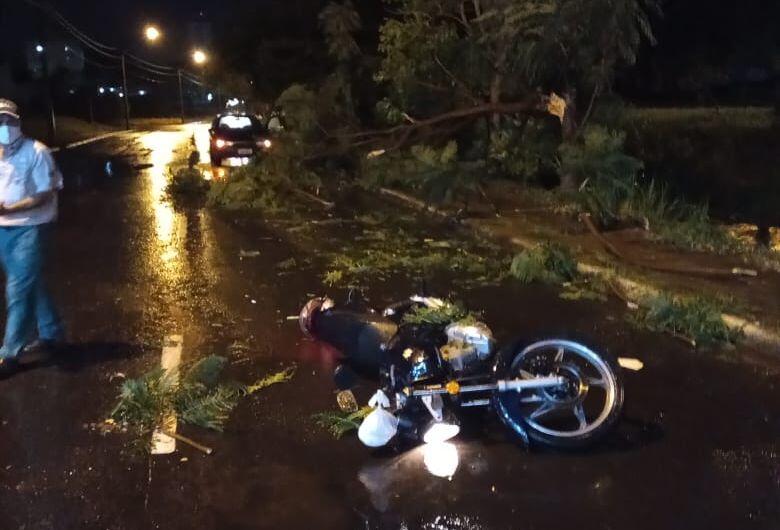 Árvore cai sobre motociclista na marginal