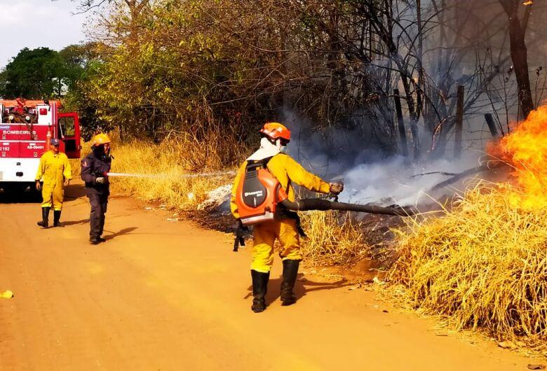 Fogo consome mais de 40 mil metros quadrados de mata na região do Embaré