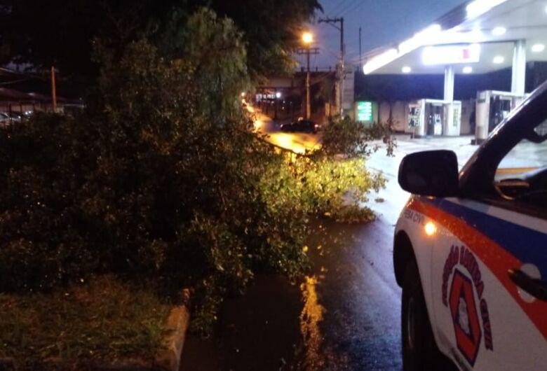 Vento de 154 Km/h atinge São Carlos na tarde deste domingo, diz Defesa Civil