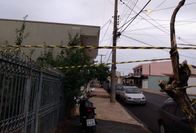 Árvore corre o risco de cair no Jardim das Torres