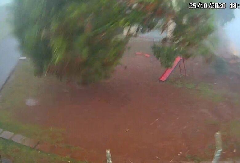 Câmera flagra queda de árvore em condomínio no Jardim das Torres