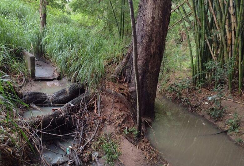 Vazamento de esgoto retorna e dejetos são lançados no Córrego Gregório