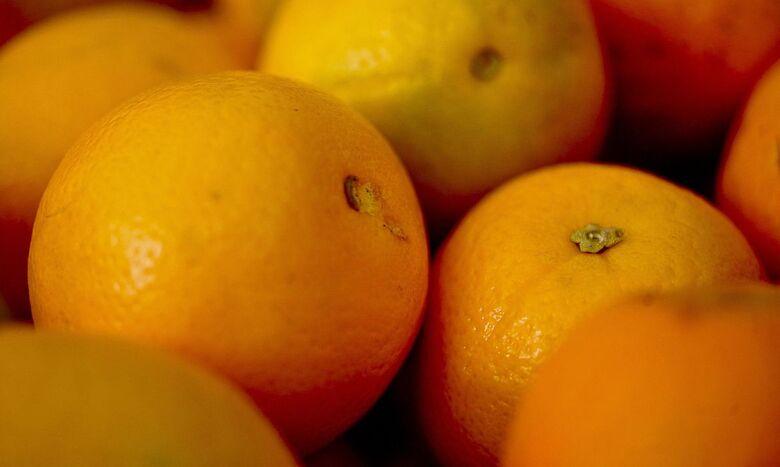 Vereador da região é detido acusado de furtar laranja - Crédito: Agência Brasil