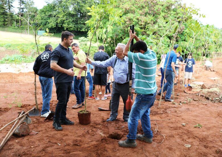 São Carlos está entre as três cidades do Brasil reconhecidas pela ONU por ações de arborização urbana - Crédito: Divulgação