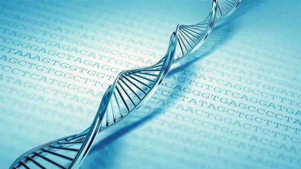 Exame de DNA pode ser feito em parentes do suposto pai - Crédito: divulgação